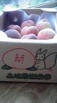 高坂果樹園3.JPG